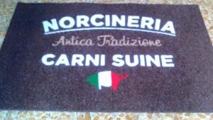 norcin